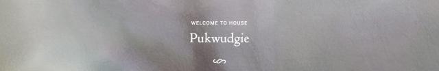 pukwudgie.png